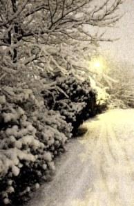 Urban street in winter