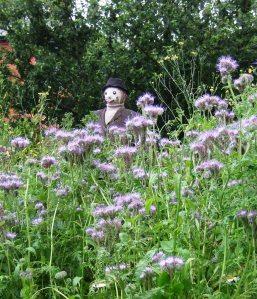 Hughendon Manor, Buckinghamshire - scarecrow in walled garden