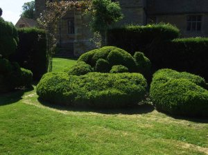 Chastleton House, topiary in Best Garden