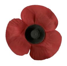poppy red on white 002
