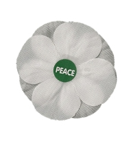 poppy white on white 001