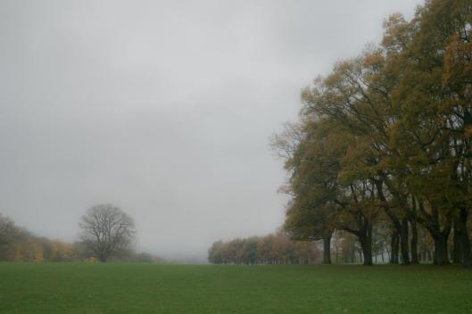 South Park, Oxford on a dull afternoon in November