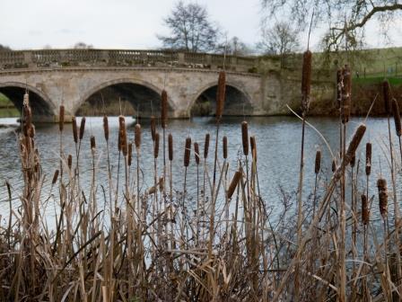 Compton Verney, bridge over lake