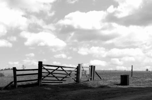 Gate against fields and sky