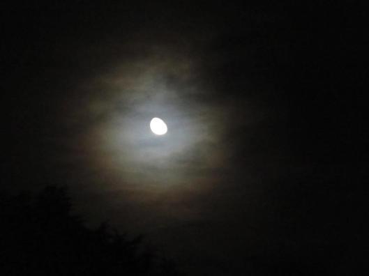 2016-10-19-moon-wf